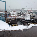 船橋漁港の様子